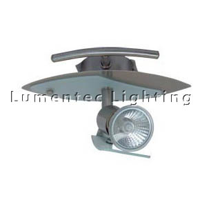 DMS0731 One Light Ceiling Spotlight in Satin Chrome with Frosted Glass Domus